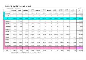 総括29政務活動費収支報告のサムネイル