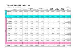 H30政務活動費決算のサムネイル